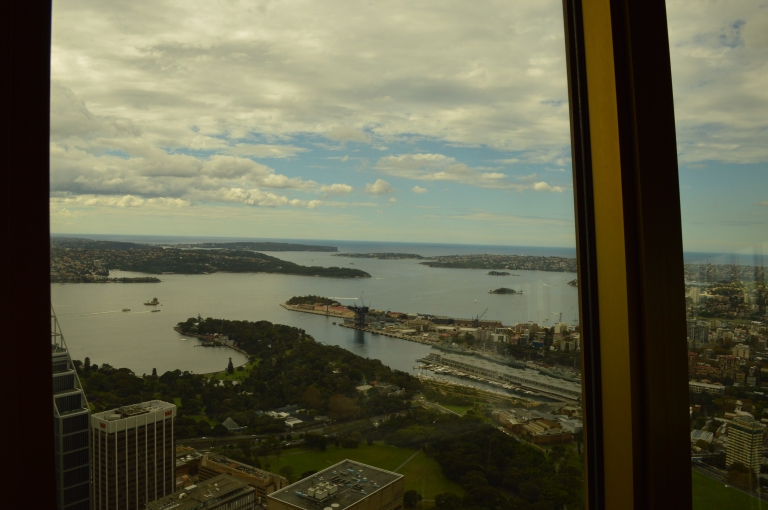 A little dark, but this is our view from lunch in the Sydney Sky Tower!