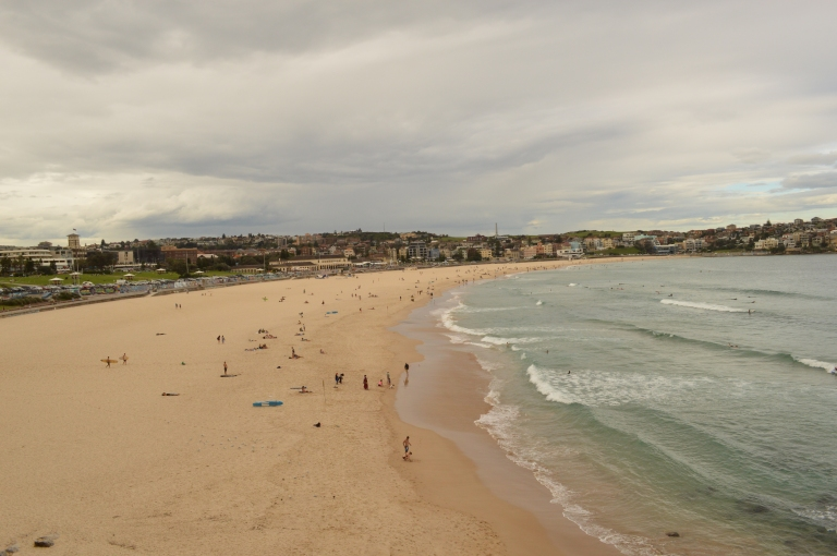 The beginning of our coastal cliff walk, Bondi Beach.