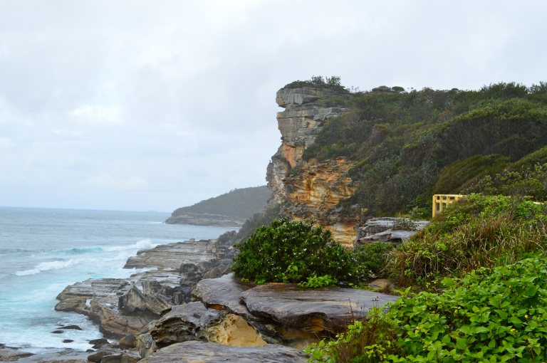 Breathtaking views and cliffs on our walk in Manly. This was my favorite!