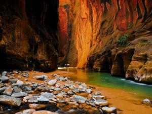 ZION NATIONAL PARK, Photo Provided by: National Geographic