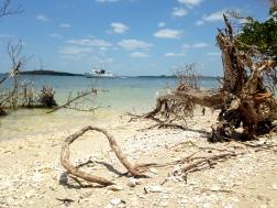 Picnic Island, FL